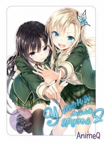 У меня мало друзей [TV-2] / Boku wa Tomodachi ga Sukunai Next (RUS)
